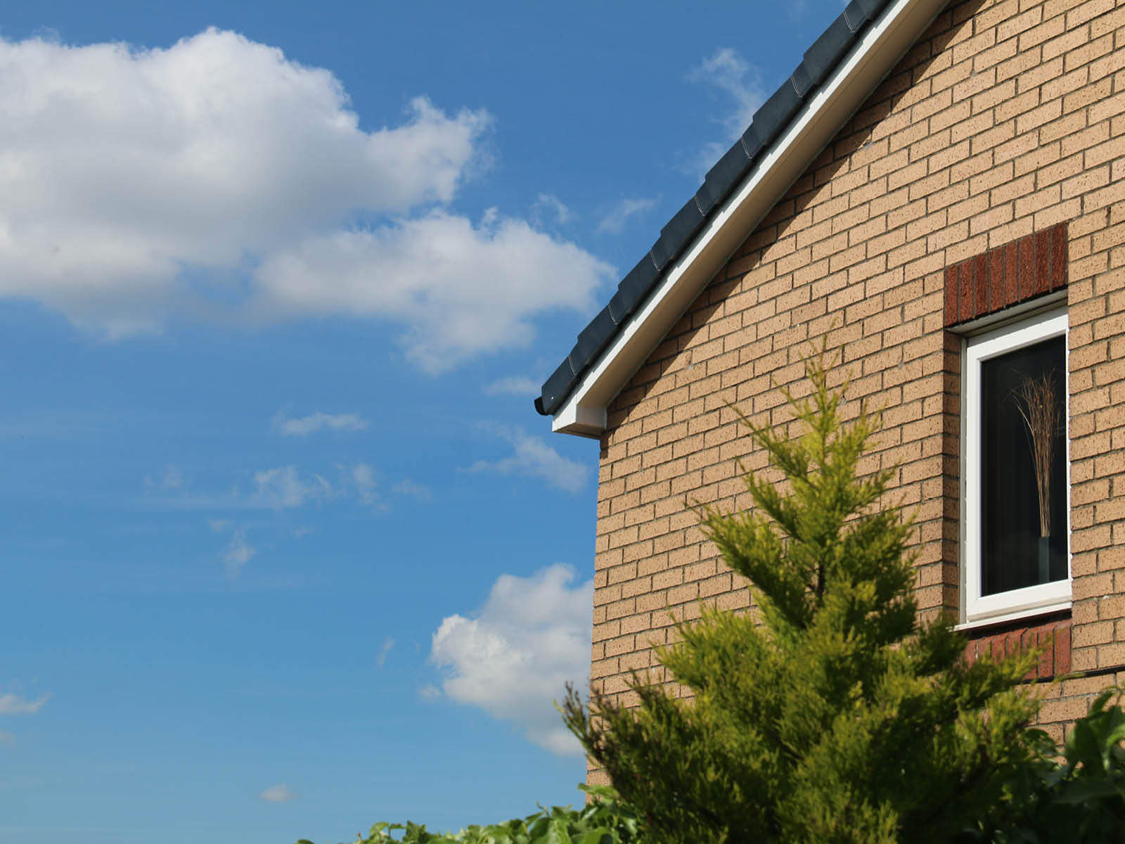 white roofline with black detailing